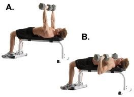 Image:Dumbbell bench press.jpg