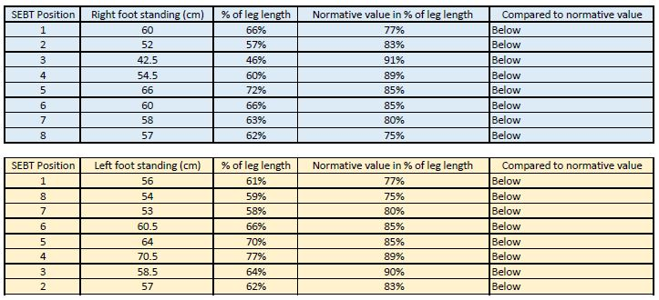 Hand Held Dynamometer Norms : Dynamometer grip strength chart