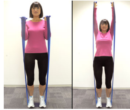 Image:Shoulder press.PNG