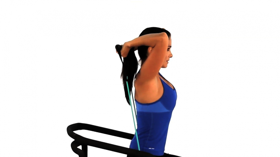 Image:Triceps-extensions-using-bands - step 2.max.v1.png
