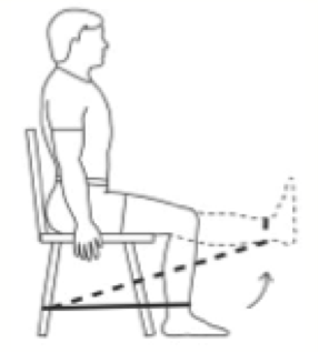 Image:Sitting knee extension.png
