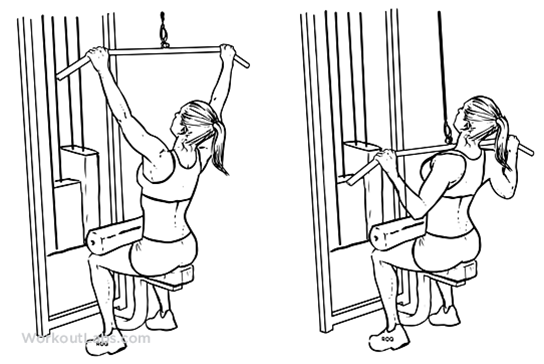 Image:Lat pull down.png