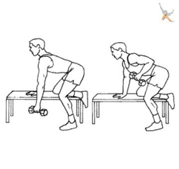 Image:Dumbbell row.jpg