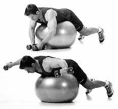 Image:Reverse fly on stability ball.jpeg
