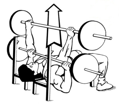 Image:bench press.jpg