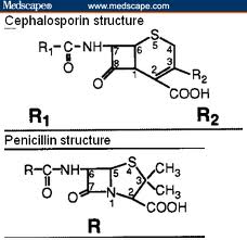Chemical structure comparisons between Cephalosporin and Penicillin.