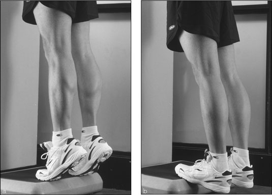 Calf Raises. Retrieved from: http://moltenwax.com/wp-content/uploads/2010/08/Standingcalveraisesexercise.jpg