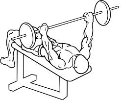 Image:Bench press 2.jpeg