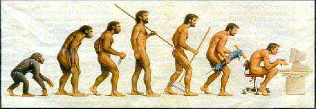 Evolution of humans. Taken from https://xenophilius.wordpress.com/2008/11/29/are-modern-humans-in-evolutions-fast-lane/