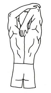 Image:Triceps stretch.png