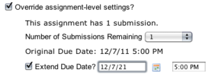 Override Assignment-Level Settings displays how many submissions have been made for this assignment by this student and to modify the number remaining or the due date.